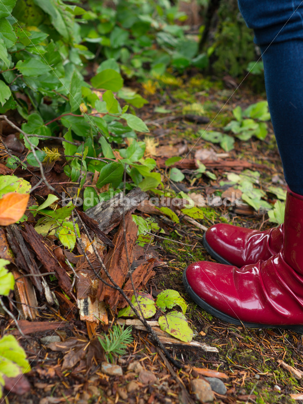 Stock Photo: Red Rain Boots on Wet Forest Trail - Body Liberation Photos