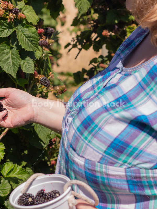 Agriculture Stock Image: Fat Woman Picking Berries - Body Liberation Photos