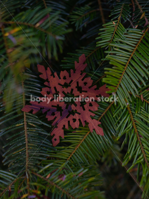 Holiday Stock Image: Christmas Tree Ornament - Body Liberation Photos